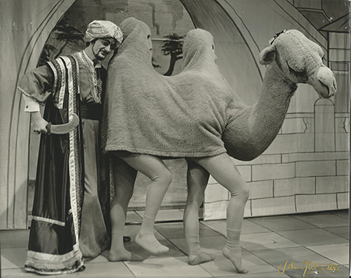 The start of a wonderful career: Robert (and Stephen) as Esmeralda the Camel!